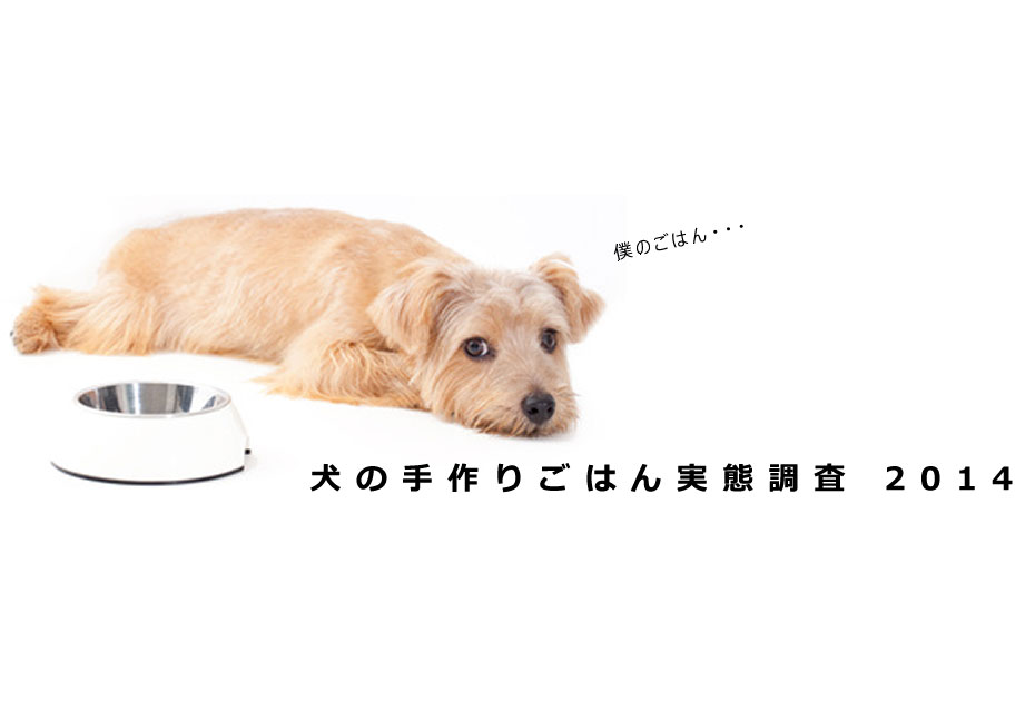犬の手作りご飯の実態調査2014