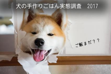 犬の手作りご飯実態調査2017