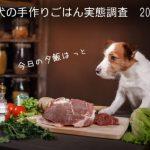 犬の手作りご飯実態調査2016