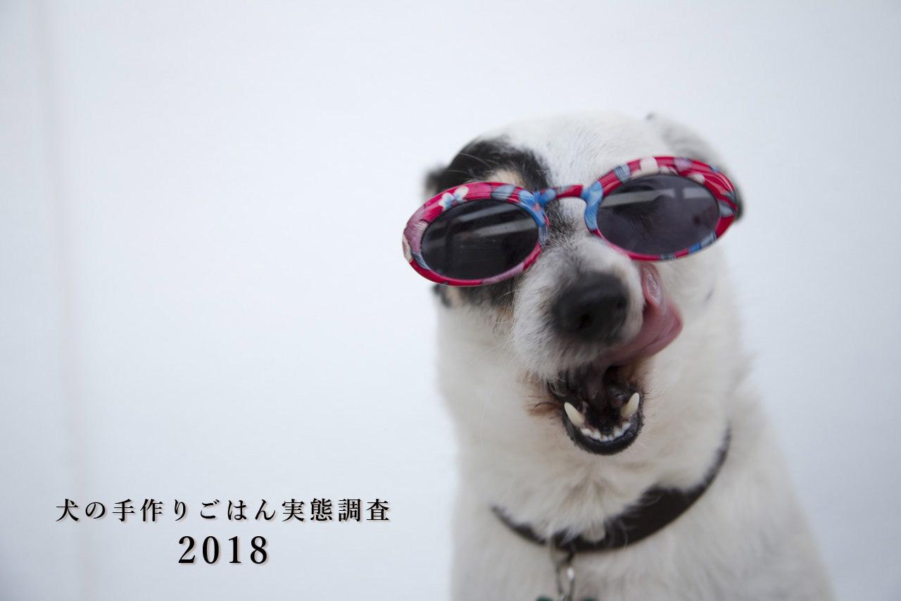 犬の手作りごはん実態調査2018